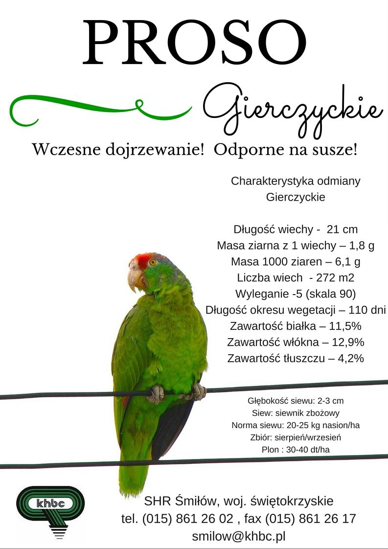 Proso Gierczyckie zKHBC